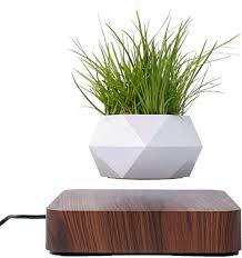 Levitating Air Plant Pot